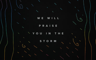 We Will Praise You In The Storm
