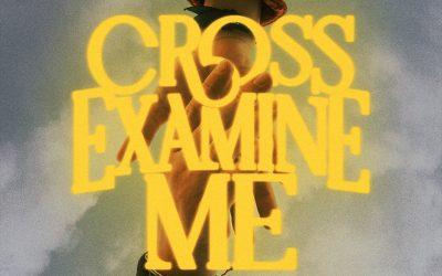 Cross-Examine Me